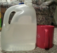 Gallon jug, mug. Photo credit: Luke Otterstad